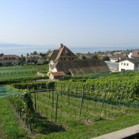 The City of Pully want to unit its activities in Rochettaz #Switzerland #Pully #wine