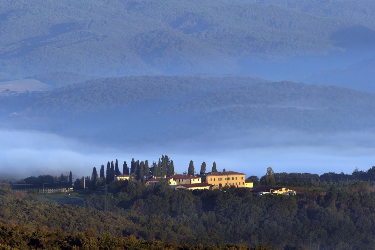 Brunello di Montalcino 2011, Tenute Silvio Nardi