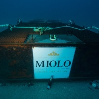 Espumante do mar: Miolo is the first Brazilian winemaker to immerse bottles in underwater cave