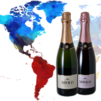 Brazilian sparkling wines elected the best in Americas