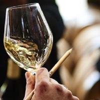 The network of Bourgogne Wine Ambassadors expands