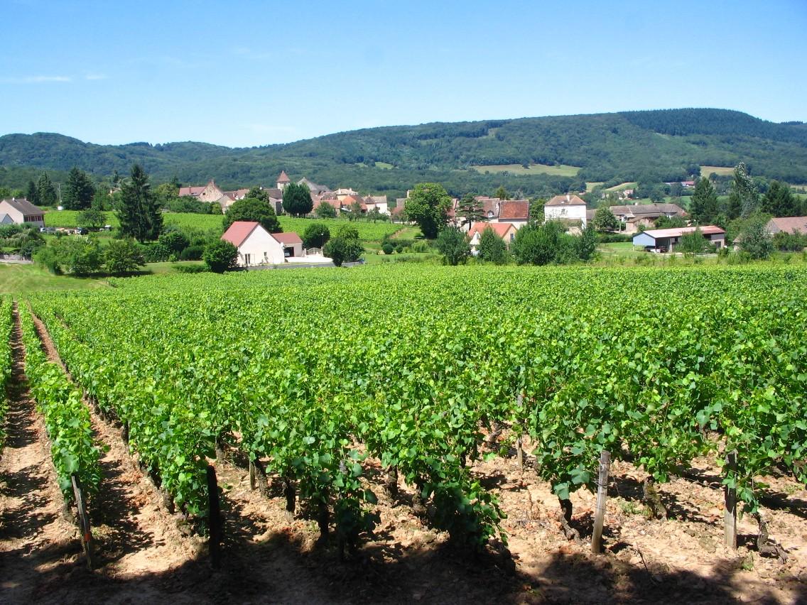 Crémant de Bourgogne, sophistication and authenticity