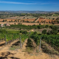 The Maremma yields a jewel called Le Pupille