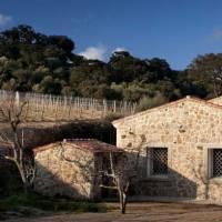 Siddura, pure Sardinia