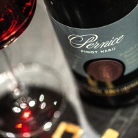 Pernice 2015, the Pinot Noir according to Conte Vistarino