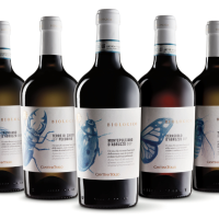 Cantina Tollo: organic and vegan certified wines made with native grapes of Abruzzo